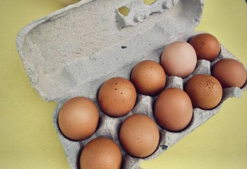 Freiland Eier aus der Region